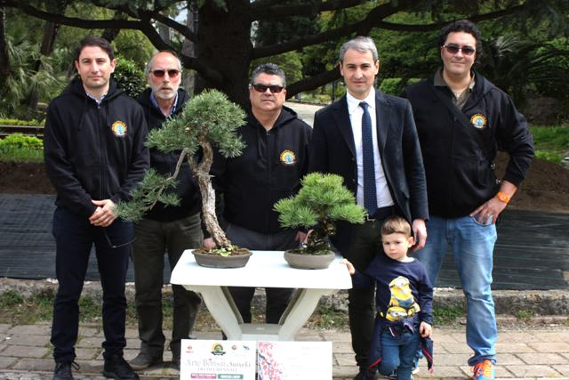 """presso lo spazio espositivo dell'ex Stac in Piazza Matteotti, si terrà la decima biennale """"Arte bonsai e suiseki"""