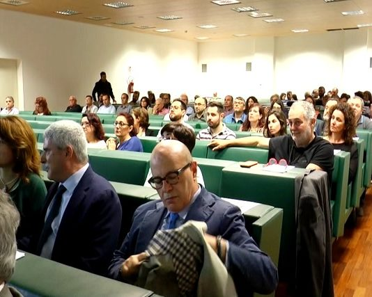 VAlutazione dell'impatto Economico dell'eROsione COSTiera.