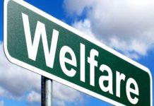 welfare-min