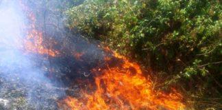 incendio sterpaglie-min
