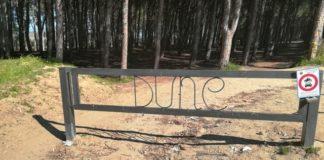 Catanzaro dune