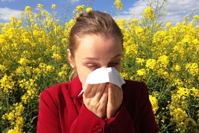 Primavera, marzo, allergie