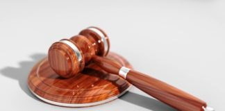 legge, tar, sentenza