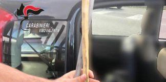 bastone in macchina