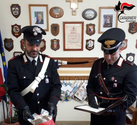 carabinieri cosenza