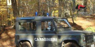 Carabinieri Tutela Forestale