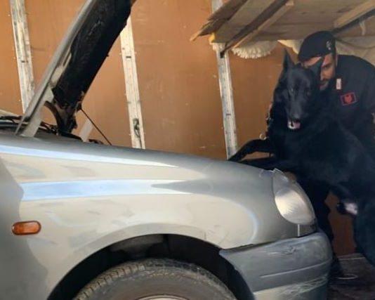 arresto dei Carabinieri di Crotone con l'aiuto del cana Black