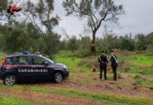 Carabinieri di Reggio Calabria