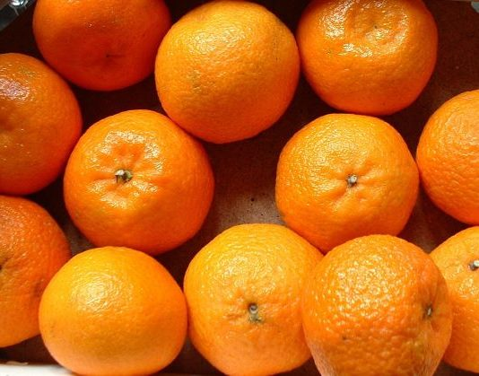 clementine Coldiretti