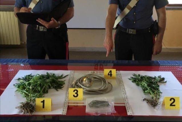 Stalettì arresto Carabinieri