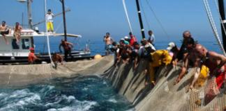 pesca tonno rosso, tonnara