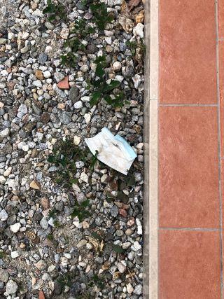 mascherina gettata a terra (Catanzaro)