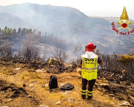 incendi nel Cosentino, Vigili del Fuoco