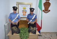 Rocca di Neto (KR) Carabinieri Stazione Casabona