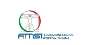 logo-FMSi