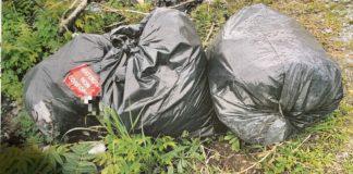 Borgia rifiuti abbandonati