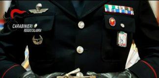 Ghiri catturati illegalmente, denunciato agricoltore, Carabinieri Reggio Calabria