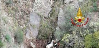Cavallo messo in salvo nel comune di Stalettì dai Vigili del Fuoco