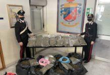 arrestati coniugi, 54 kg marijuana, Carabinieri Catanzaro