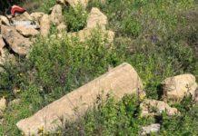 Belvedere Spinello (KR) Insediamento greco individuato nel Crotonese