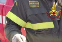 Vigili del Fuoco Cosenza, cattura rettile