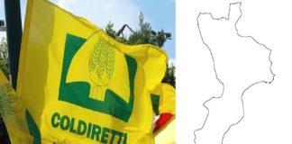 Coldiretti, Aspettiamo la Calabria in zona bianca