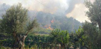 incendio Reggio Calabria