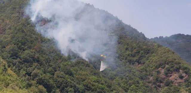Riserva valli cupe incendio