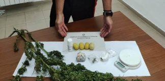 PETRONA' coltivava marijuana in casa